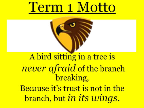 Term 1 Motto Hawks